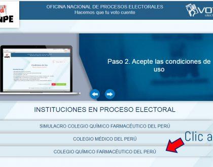 Simulacro de Voto Electrónico No Presencial