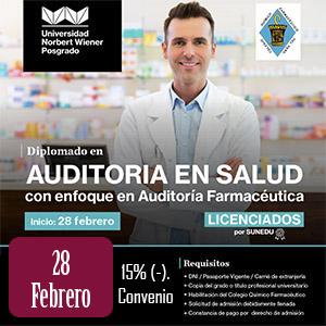 Diplomado en Auditoría en Salud - U. Norbert Wiener.